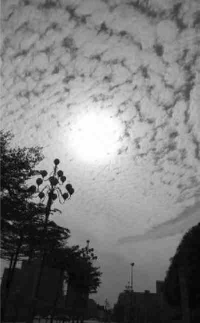 昨晨陆川地震,鱼鳞云是预兆?