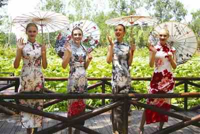 文旅风舞红荷韵 第十六届红荷节