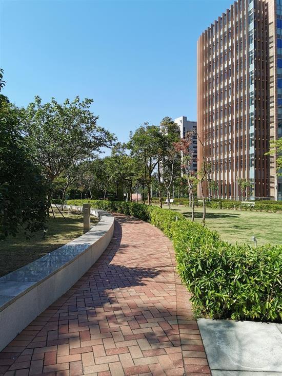 香港大学百周年纪念校园片区。