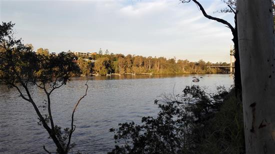 昆士兰大学校园边上的布里斯班河。